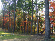 Sample of lots available in Bear Knob