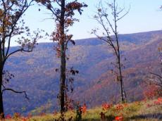 Bear Knobs Gorgeous Views