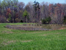 Stone Cliff Acres offers stocked ponds