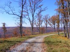 Bear Knobs Trail