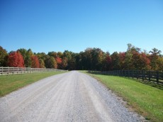 Rock House Ranch has paved roads and underground Utilities