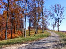 Easy to travel through Bear Knob like a country road
