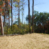 29 Acres, Good Timber w/Great Views - Hanging Limb, TN - $89,000