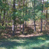 Wooded Commercial/Residential Site - 36 acres - $89,000