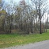 100 Acre Wooded Property In Big South Fork Area - $350,000