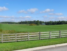 Gently rolling fenced pasture/weeded homesite