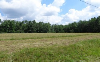 Partially Cleared Corner Lot - 3.89 Acres – Clarkrange, TN - $39,000 - Picture 2