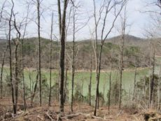 Lake Cumberland Resort View of Lot #10