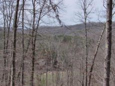 Lake Cumberland Resort View of Lot #14